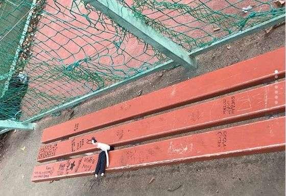 Елену Исинбаеву обидели волгоградские вандалы