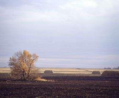 Волгоградский арендатор захламлял сельхозугодья