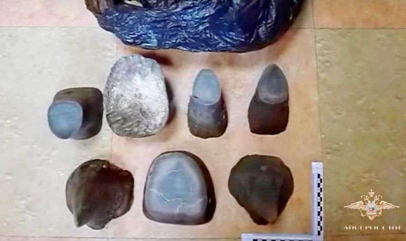 Контрабандисты осуждены за рога белого носорога. Видео