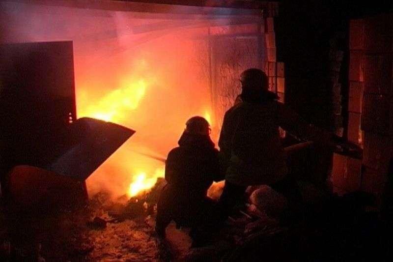 При пожаре под Михайловкой пострадала женщина с ребенком