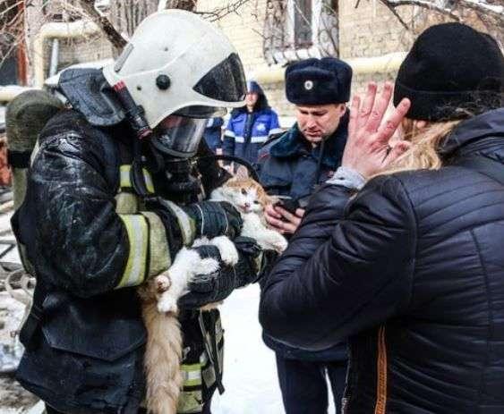 Волгоградские пожарные спасают любые жизни