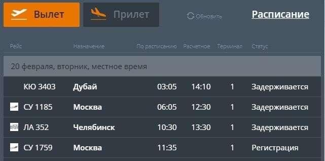 Непогода задержала три рейса в Дубай, Москву и Челябинск