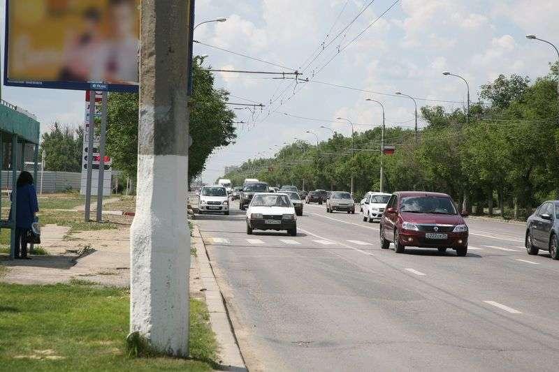 Дорогу до аэропорта засадят деревьями и кустарниками на 28 млн рублей