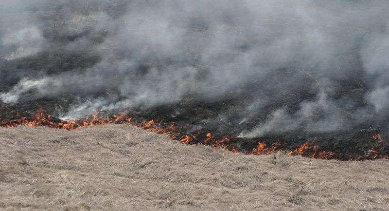 Волгоградские пожарные тушат камыш