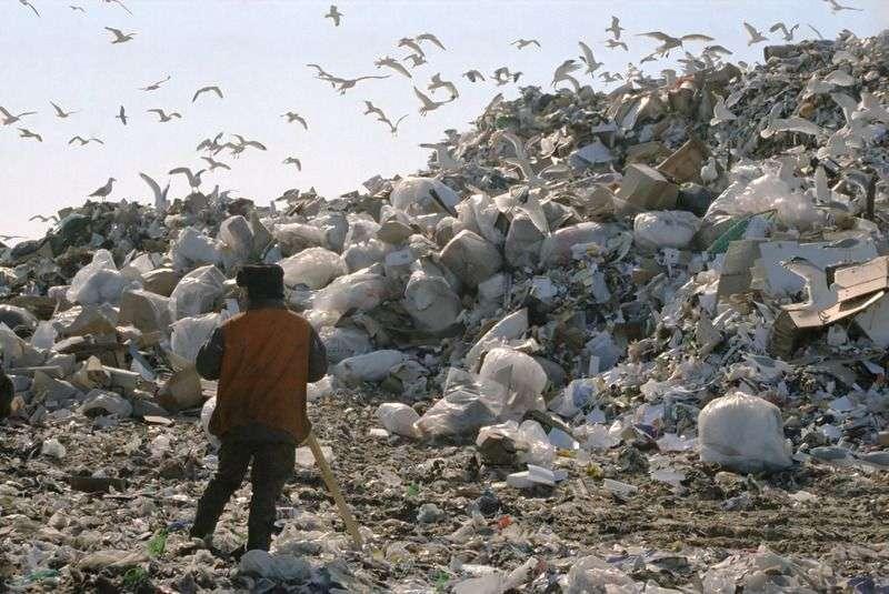 Борьба за мусорный пирог накалилась до предела