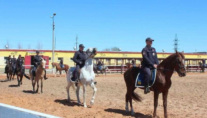 Буйных болельщиков во время ЧМ будут разгонять конные патрули