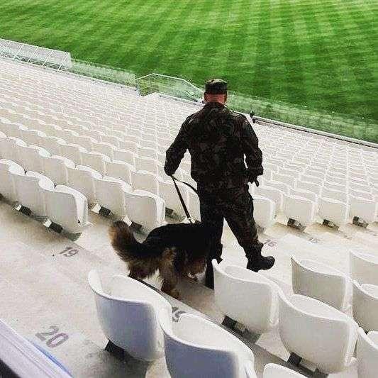 В Волгограде перед первым матчем ОМОН и кинологи проверили стадион