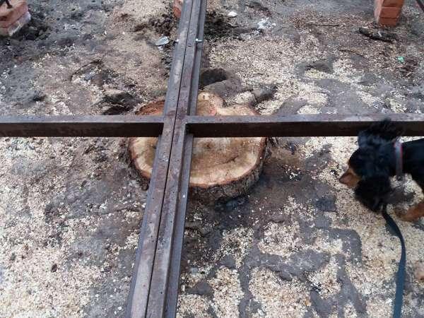 Деревья на Советской спилил «Волгоградзенехоз»