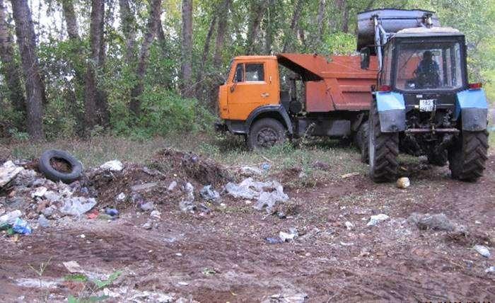 Волгоградцев приглашают очистить лес от мусора
