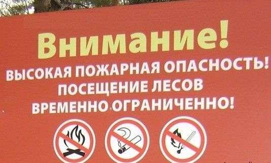 Леса Волгоградской области закрыли для посещения