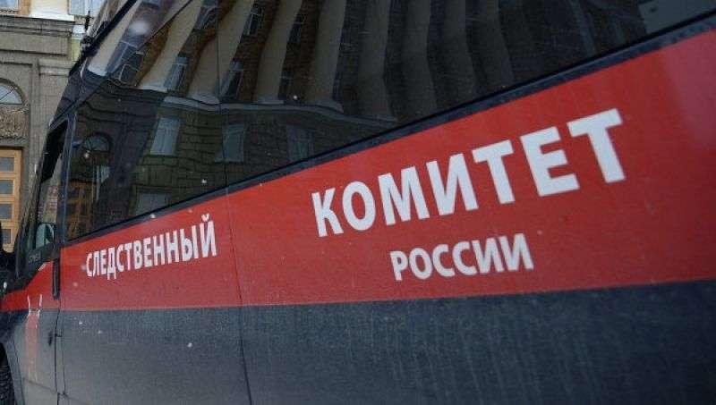 В Михайловском районе обнаружено тело убитой пожилой женщины