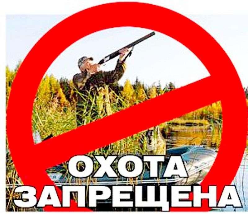 В Волгоградской области запретили охоту
