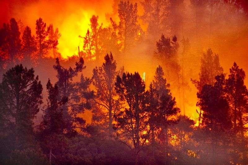 МЧС экстренно предупреждает о пожароопасности