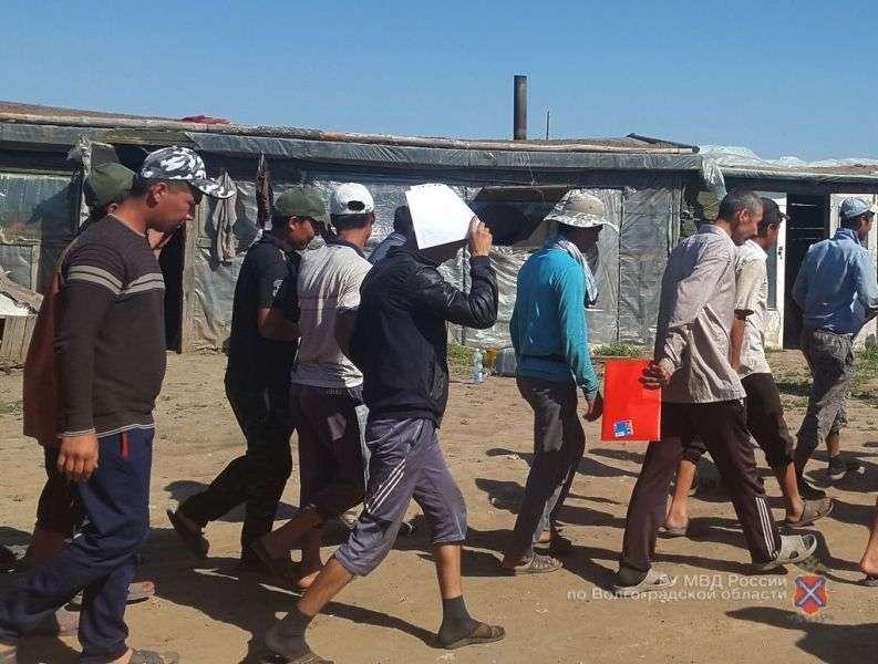 В Светлоярском районе полицейские обнаружили сотню мигрантов