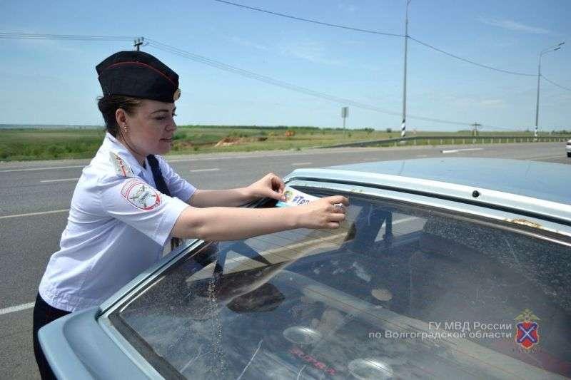 Волгоградские водители пообещали не гонять на трассах