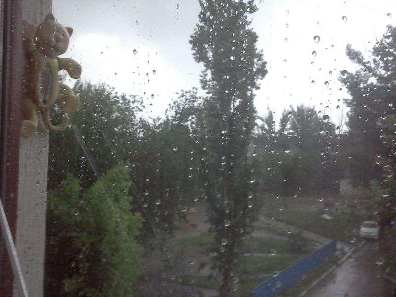 Волгоградцев в выходные ожидают дожди, грозы и 30-градусная жара