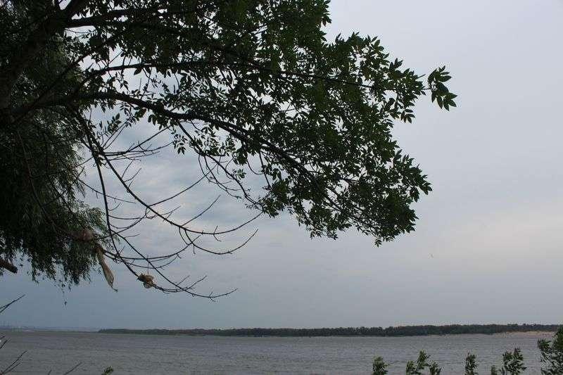 В Волгограде на выходные будет прохладно и дождливо