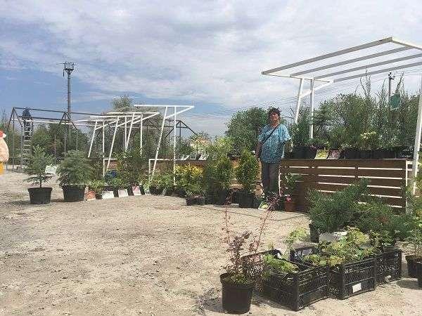 В Красноармейском районе откроется новая ярмарка