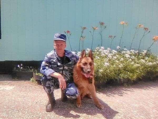 Уснувшего под кустом мальчика помогла найти собака УФСИН