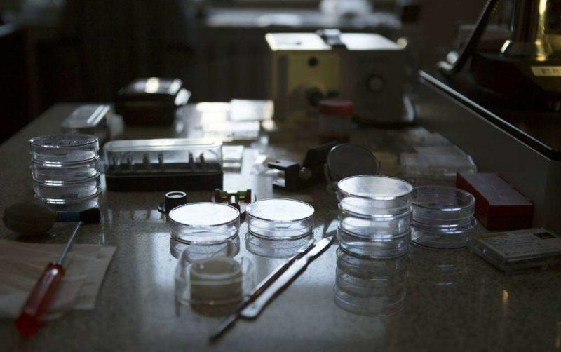 Ученые рассказали, как связаны зубная паста и сахарный диабет