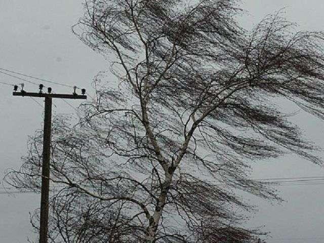 МЧС сообщило об ухудшении погоды в ближайшие часы