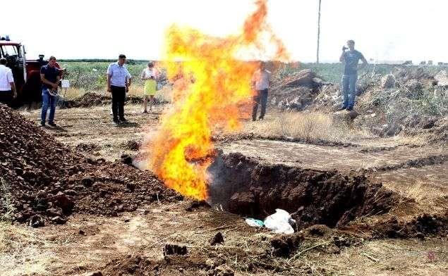 Под Волгоградом уничтожили около 300 кг конопли и марихуаны