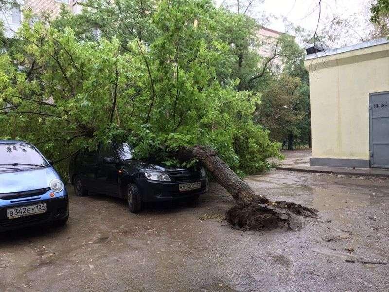МЧС обещает два дня гроз и град в Волгоградской области