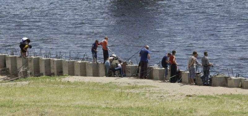 Волгоградский Росприроднадзор выборочно штрафует за ущерб экологии