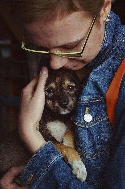 В центре Волгограда пройдет ярмарка животных из приюта