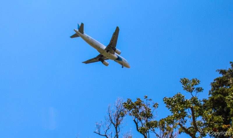 В Волгограде совершил экстренную посадку самолет из Махачкалы