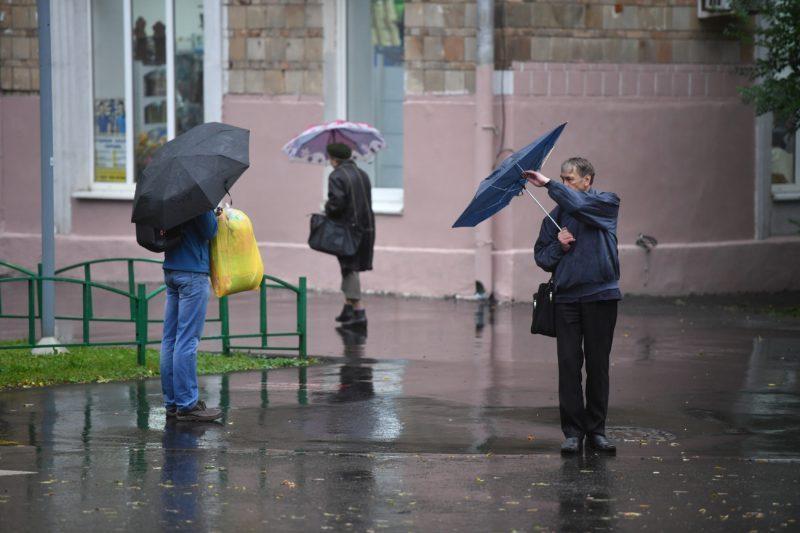 МЧС: на территории Волгоградской области ожидается усиление ветра