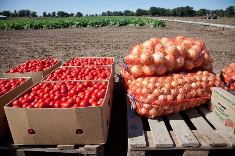 Андрей Бочаров хочет дать бой собственникам пустых сельхозугодий
