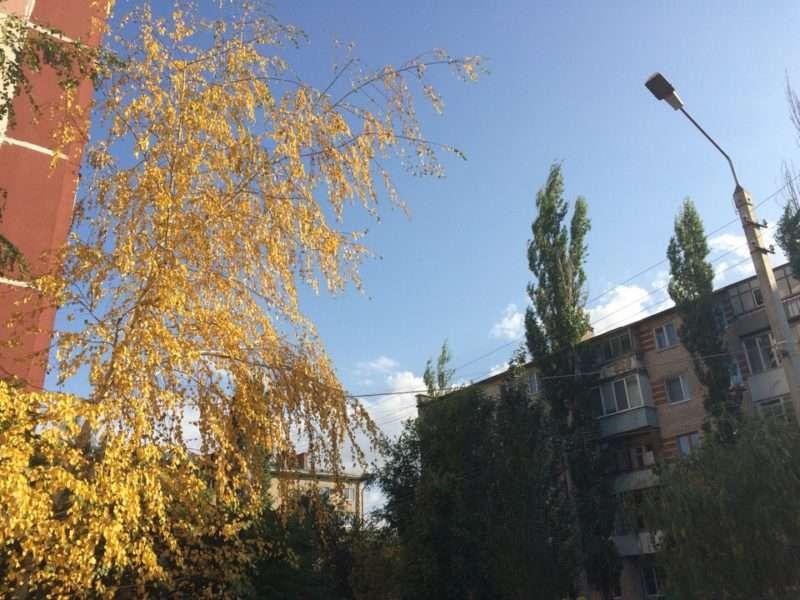 В Волгограде будет солнечно и прохладно