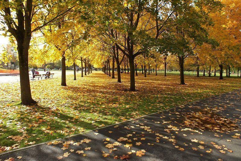 В Волгограде в выходные дни ожидается +12°С