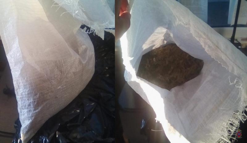 Служебная собака нашла у волгоградца в «Пежо» пакет с марихуаной
