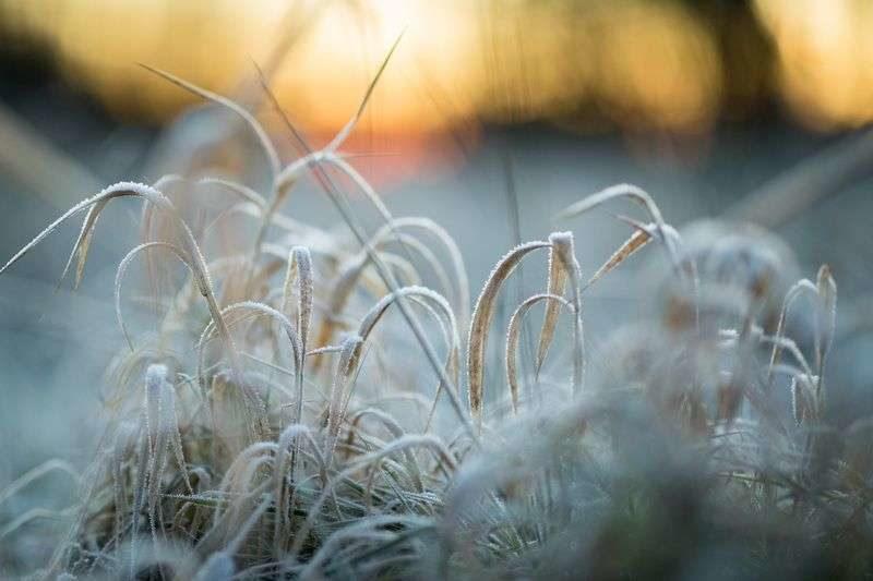 По региону ударят морозы до -14 градусов