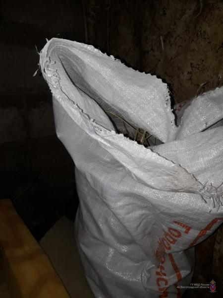Очередного «марихуанщика» задержали в Калачёвском районе Волгоградской области