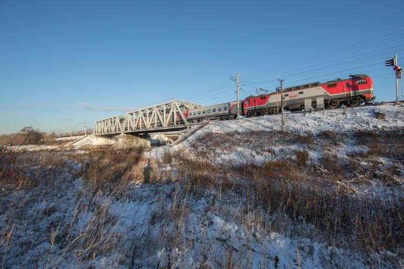 Из-за бесхозных домашних животных задержался поезд «Астрахань – Волгоград»