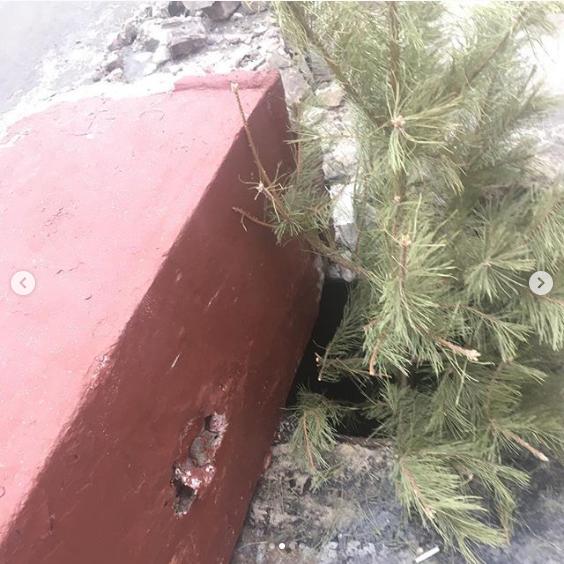 «Управление отходами – Волгоград» опровергло обвинения в поломках во дворе