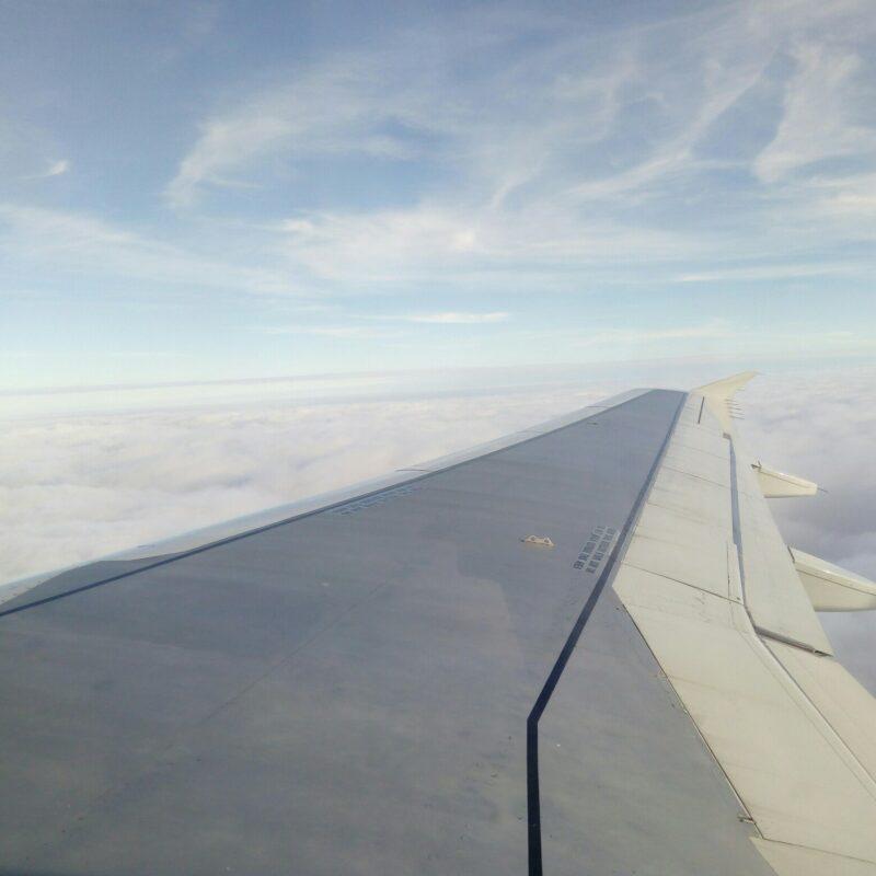 ЧП в самолете: пассажир избил стюардессу во время полета