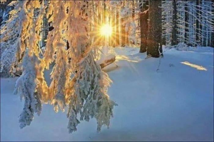 В Волгограде потеплеет до 0 градусов