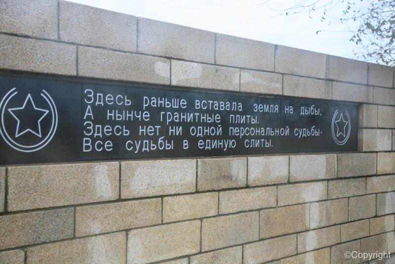 Памятники солдатам вермахта, героизация фашизма: в Общественной палате РФ обсудили сохранение исторической памяти