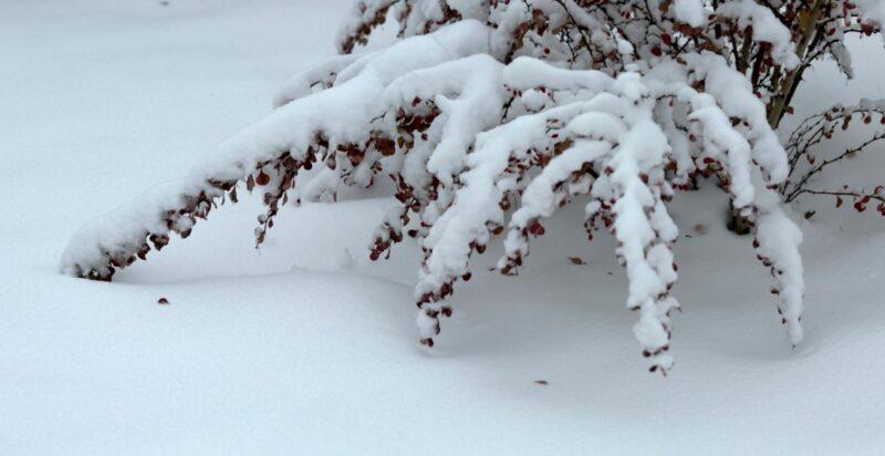 Зимняя депрессия или как дождаться весны