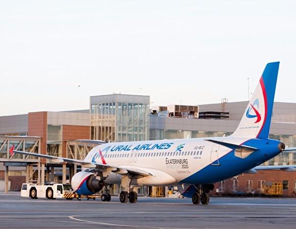 Авиапассажиров рейса Волгоград-Ереван не будут кормить во время полета