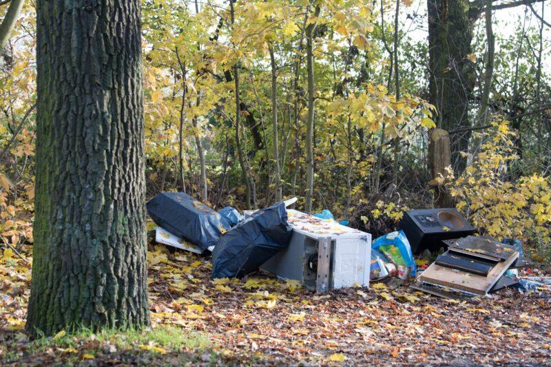 Для Сарпинского не нашли компанию, которая вывезла бы мусор
