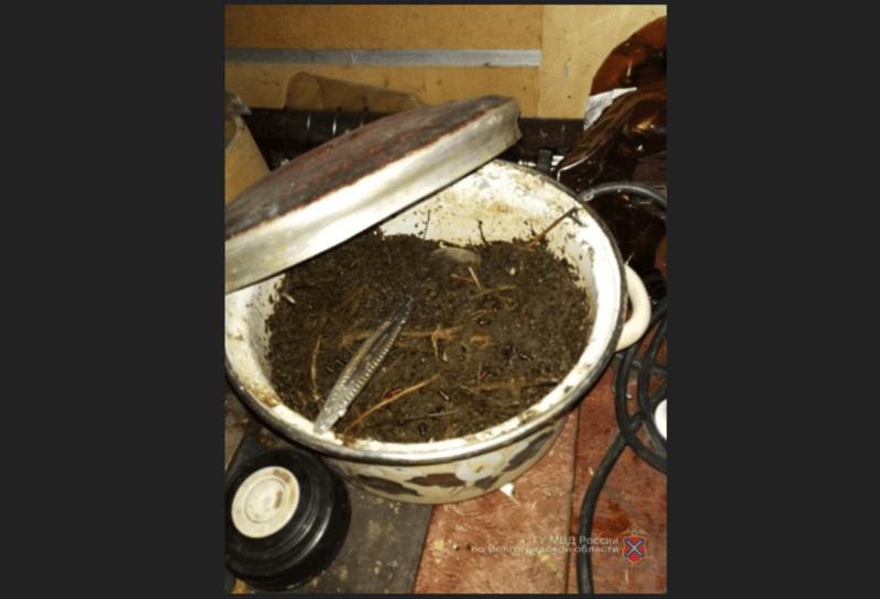 В гараже в Красноармейском районе нашли марихуану и гашишное масло