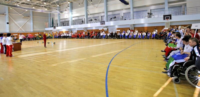 Волгоградские паралимпийские спортсмены взяли две медали по бочча