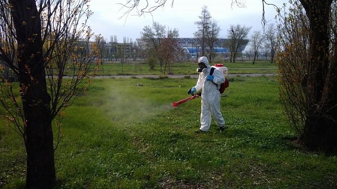 В регионе приступили к травле комаров и клещей