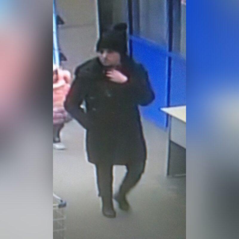 Волгоградцев просят опознать по фото похитительницу телефона