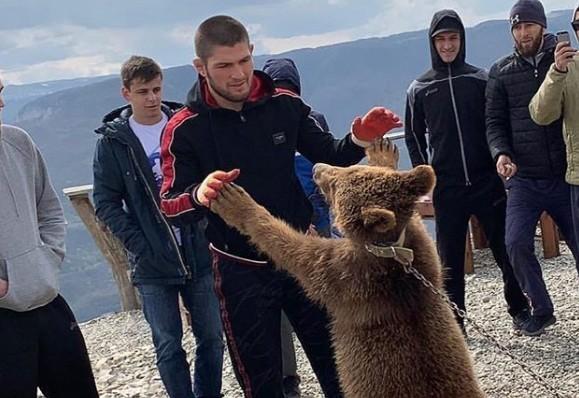 Хабиб Нурмагомедов вступил в «спарринг» с медведем